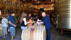 Member-Guest Barrel Tasting @ Solis Winery