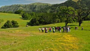 Hike ​the ​Magnificent ​Seven! ​ @ Coyote Lake Harvey Bear Ranch County Park