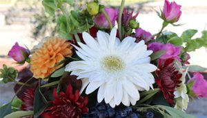 Pumpkin Floral Workshop @ Sarah's Vineyard